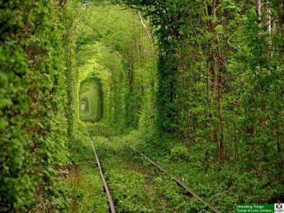 The Tunnel of Love, Ukraine : Make Your Wishes Come True