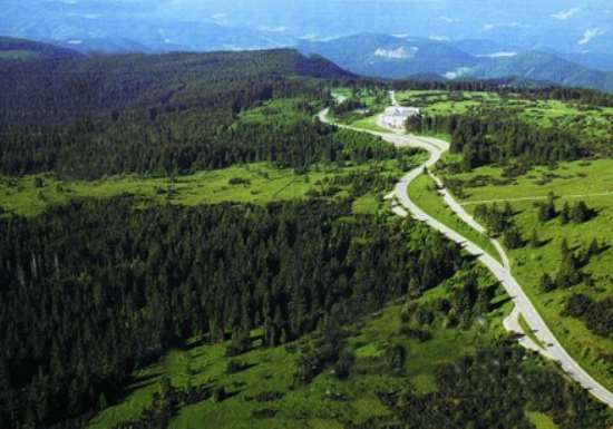 The Fairy Tale Road Trip: The Black Forest, Germany