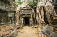 Ta Prohm ruins in Cambodia