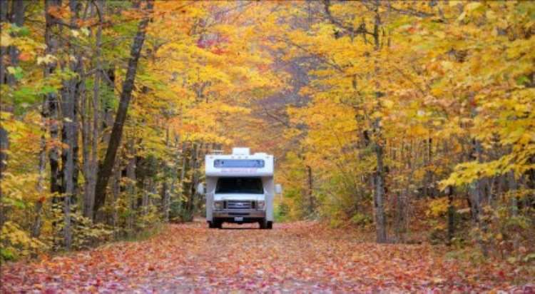 The New England Road Trip: A Perfect Fall Getaway